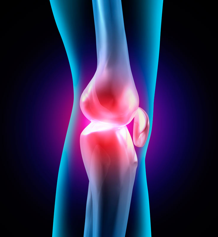 fisio ortopédica